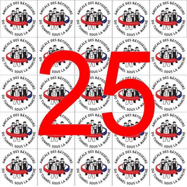 Logo mosaique 25 couleur
